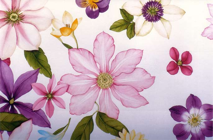 http://www.in-publication.com/ect/files/gimgs/22_clematis-detail.jpg